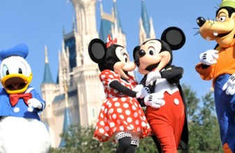 DISCOUNT ON DISNEY WORLD HOLIDAY